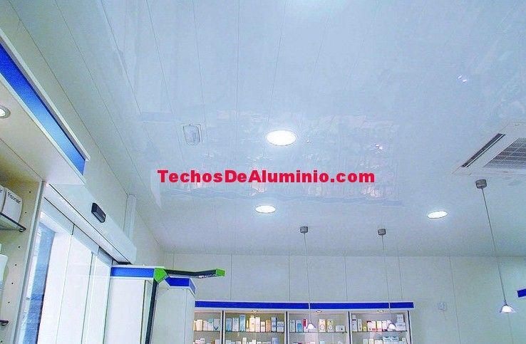 Profesional de empresa techos aluminio acústicos decorativos